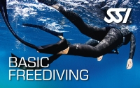 Apnoe Workshop Basic Freediver mit Nik Linder